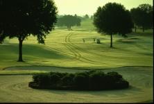 The Oaks at Citrus Hills Golf Club