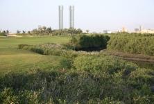 Tower Links