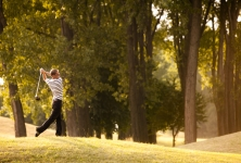 Birdland Golf Club